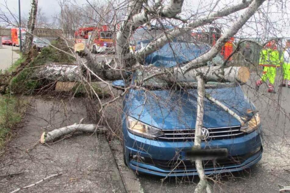 Der Volkswagen wurde stark beschädigt.