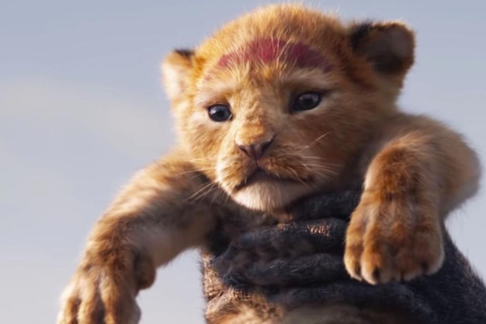 Lebensecht: Löwenjunges Simba in den Armen von Rafiki.