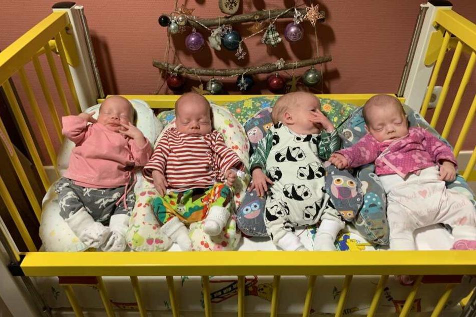 Die kleinen Vierlinge (l-r) Ina, Hanna, Noah und Finja liegen in einem Bett. Sie wurden in der 31. Schwangerschaftswoche in der Klinik St. Hedwig geboren.