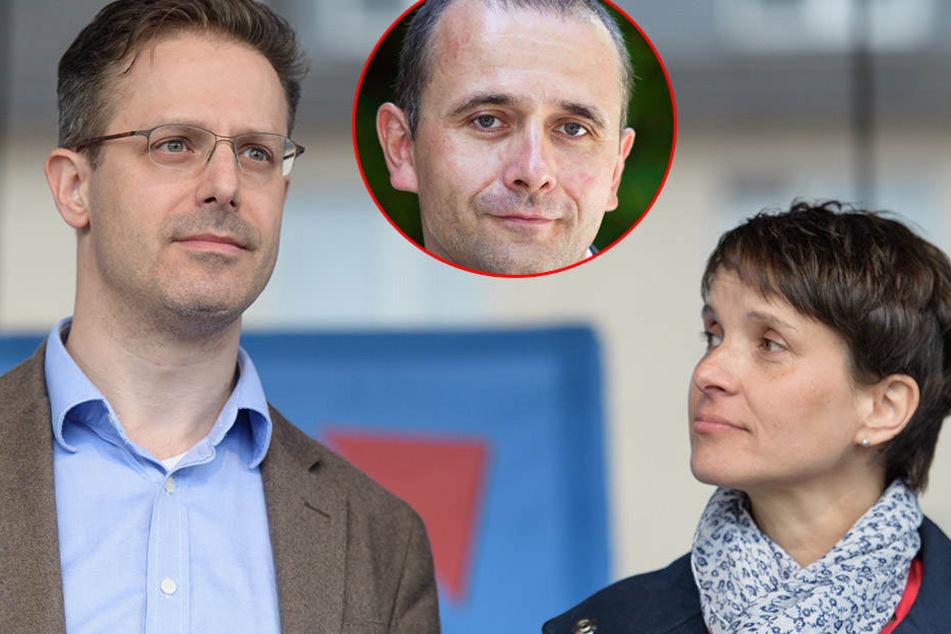 Berater rechnet ab: Pretzell und Petry zerfleischen die AfD