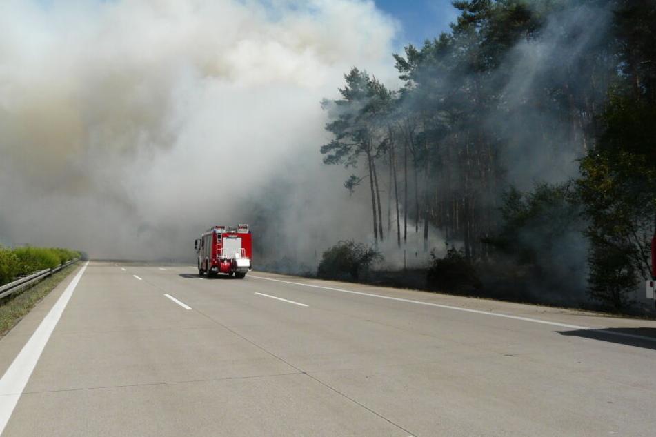 Brand breitete sich trotz Löschens aus: Waldstück an der A2 geht in Flammen auf