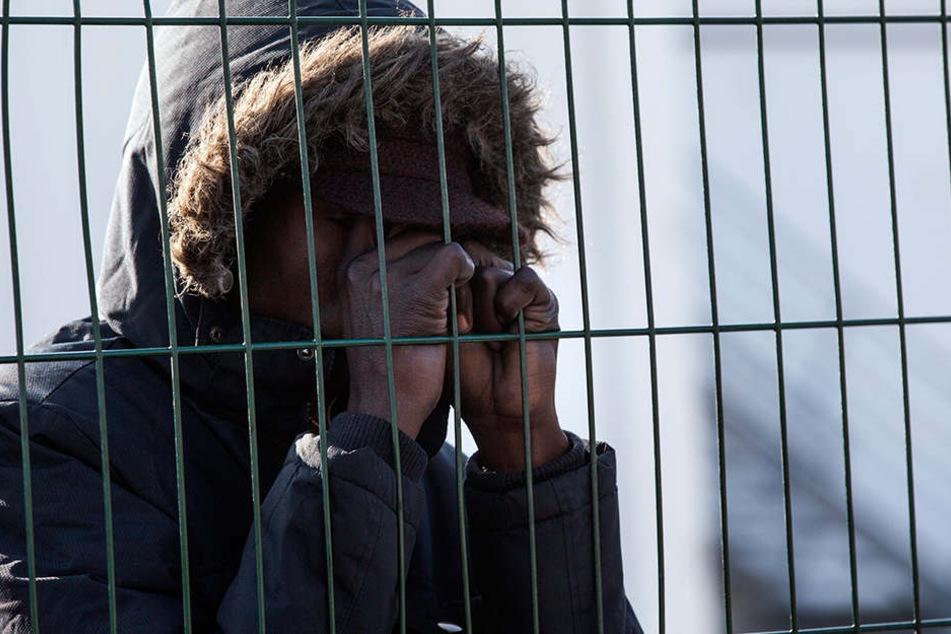 """Behörden schätzen, dass sich im """"Dschungel"""" bis zu 200 Aktivisten der """"No-Border-""""Bewegung aufhalten."""