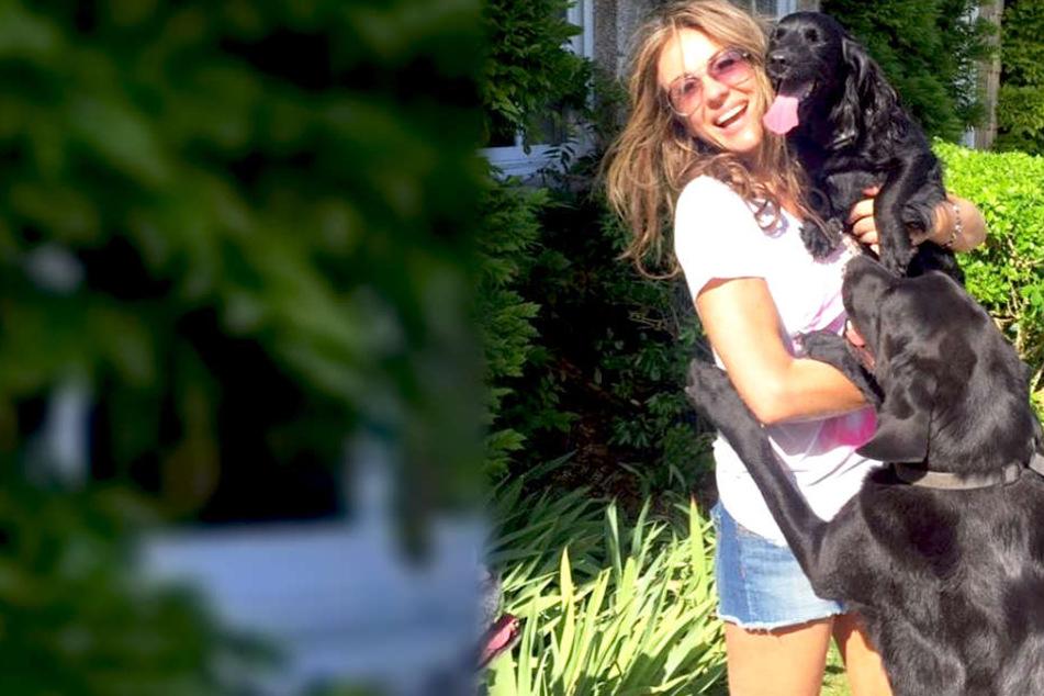 Elizabeth Hurley ist total vernarrt in ihre Hunde.