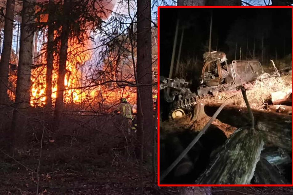 Der Harvester explodierte im Wald, auch Feuerwehr aus dem angrenzenden Bayern mussten für die Löscharbeiten anrücken.