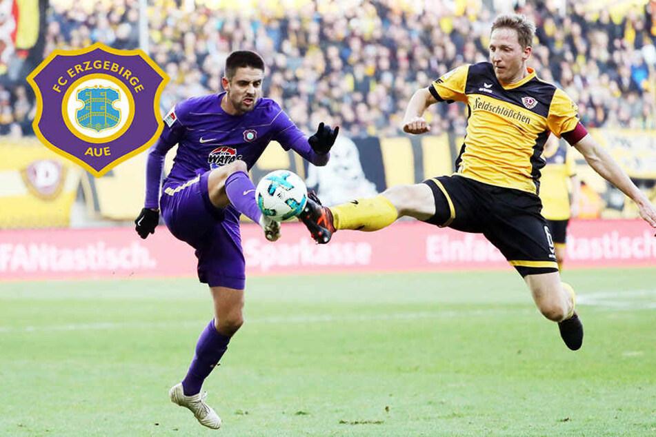 Aue fiebert Spitzenspiel gegen Dynamo entgegen!
