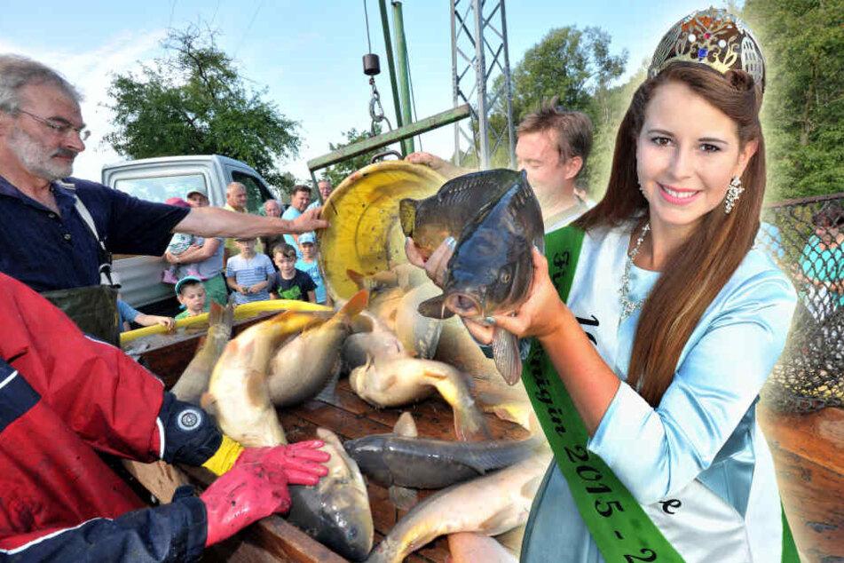 Die 16. Sächsische Fischkönigin Sarah Appenfelder präsentiert sich standesgemäß mit einem stattlichen Karpfen.