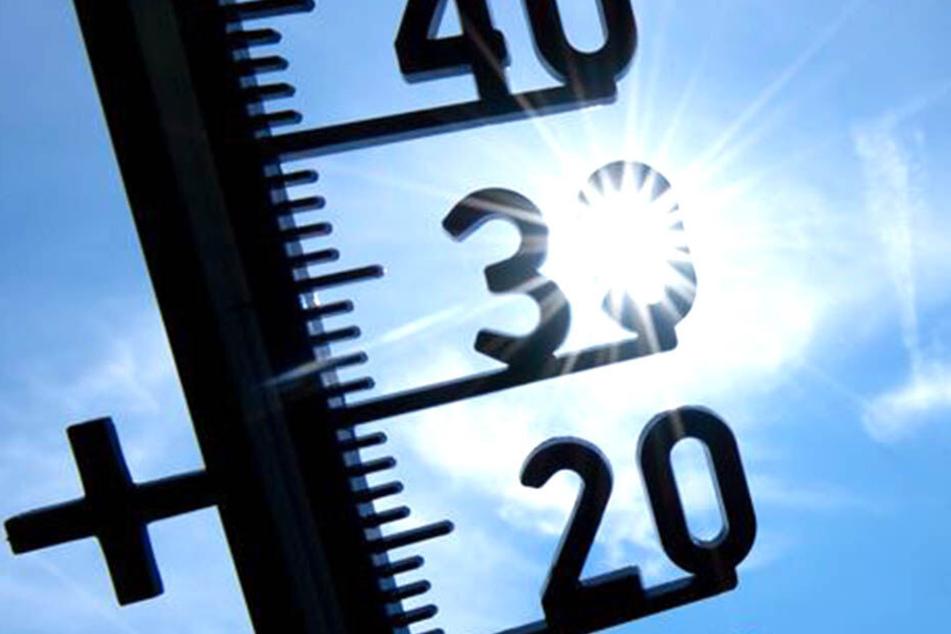 Die Temperaturen auf den Thermometern kletterten und kletterten.