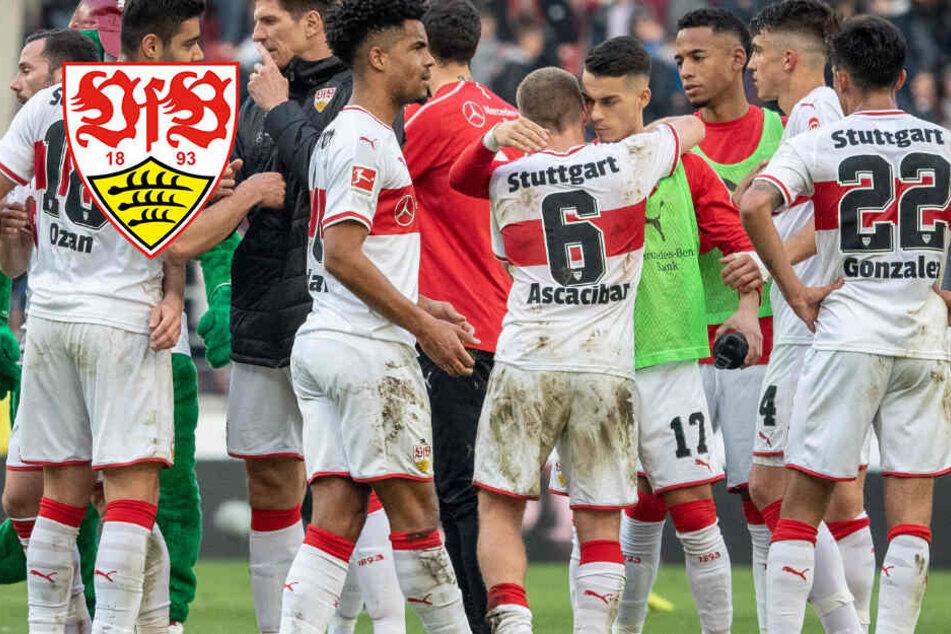 Redet sich der VfB den Punktgewinn schön? Die Zufriedenheit ist trügerisch