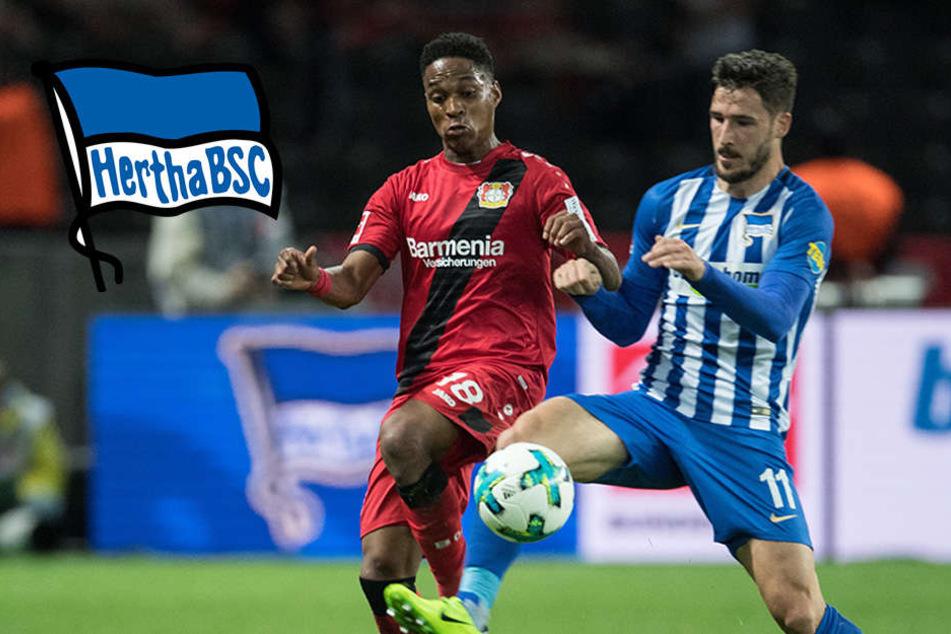 Leckie knipst weiter: Hertha macht es spannend und gewinnt