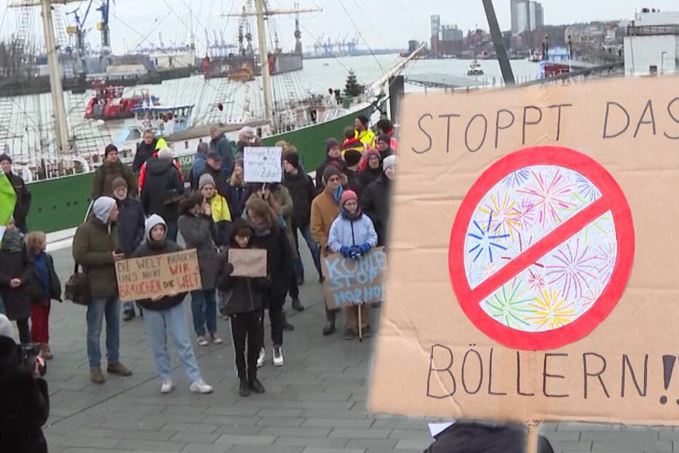 Fridays for Future: Klima-Aktivisten demonstrieren gegen Böller