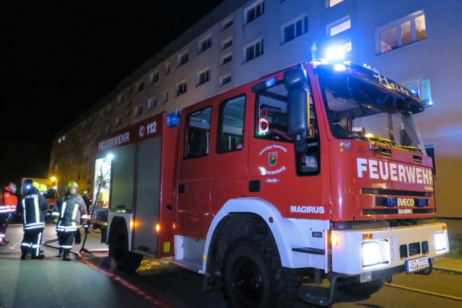 Herd statt Kochplatte eingeschaltet: Feuerwehr-Einsatz in Wohnblock