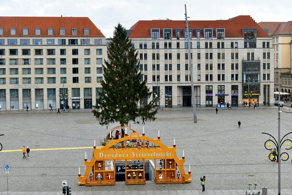 Dresden: Striezelmarkt-Fans aufgepasst: Ab morgen gibt's 50.000 Tassen zu kaufen