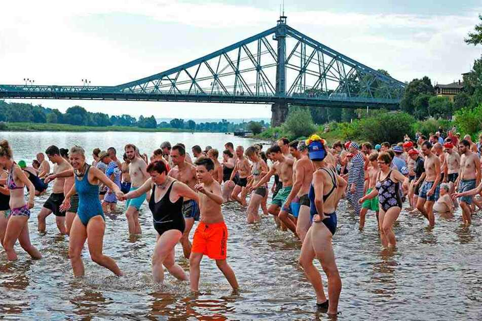 Kalkuliertes Risiko: Beim jährlichen Elbeschwimmen sind Wasserretter immer zur Stelle.