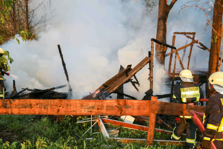 Oberhalb des Dammwildgeheges brannte die Hütte, die als Jugendclub genutzt wurde.