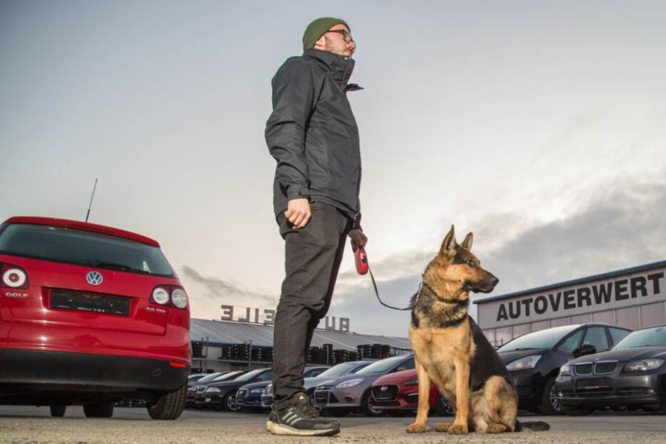 Auto weg, Hund wieder da. Händler Sonntag mit Ajax auf dem Firmengelände.