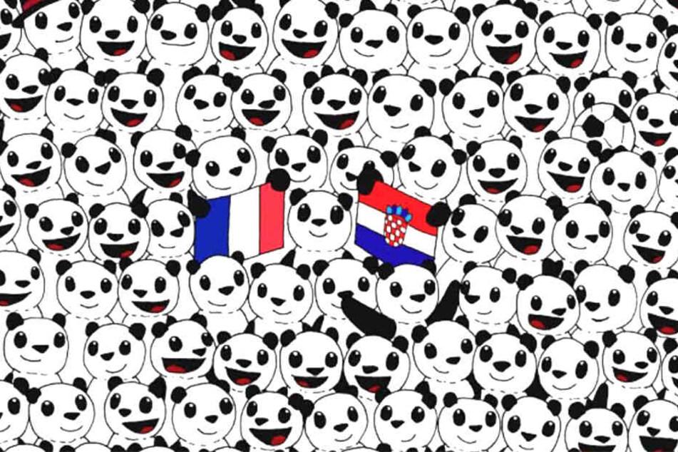 DIe Pandas fiebern dem WM-Finale zwischen Frankreich und Kroatien entgegen.