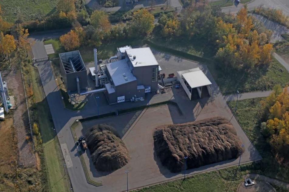 Das Biomassekraftwerk in Planitz gewinnt zunehmend an Bedeutung. Fast die Hälfte des von der ZEV pro- duzierten Stroms stammt schon jetztaus erneuerbaren Energien.