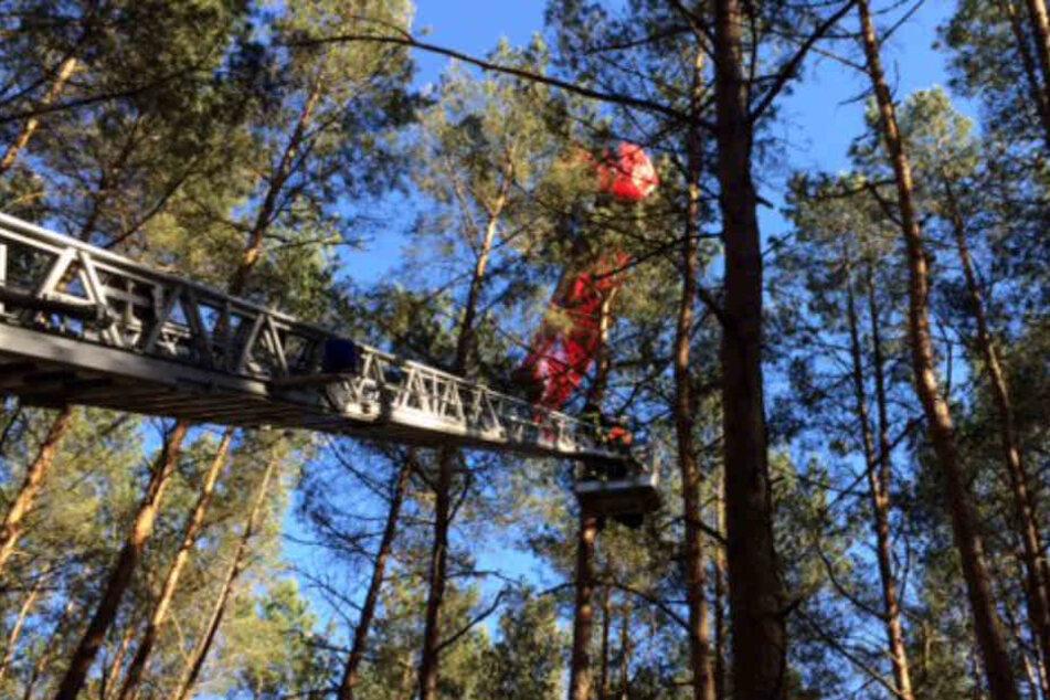 Die Feuerwehr konnte den Flieger unverletzt retten.