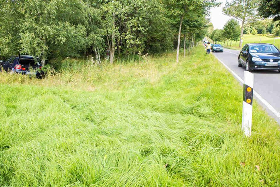 Der Fahrer des VW kam von der Fahrbahn ab, fuhr noch mehrere Meter über eine Wiese und kam an einem kleinen Birkenwäldchen zum Stehen.