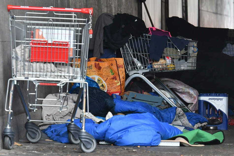 Im Tiergarten haben sich viele Obdachlose aus Osteuropa niedergelassen.
