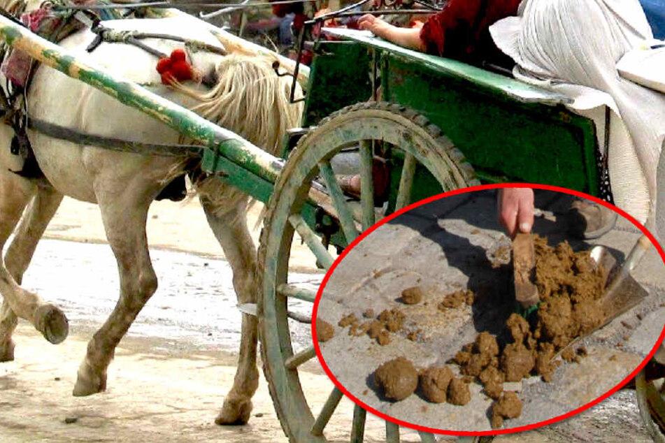 Anhand der Hufspuren und der vom Kutschpferd verteilten Pferdeäpfel wurden die Beamten zielsicher zum Stall des Täters geführt.