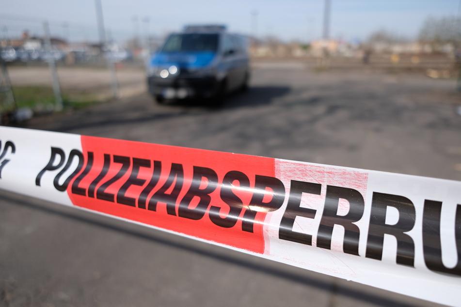 Bauer findet Schädel im Unterholz: Polizei hat dringenden Verdacht