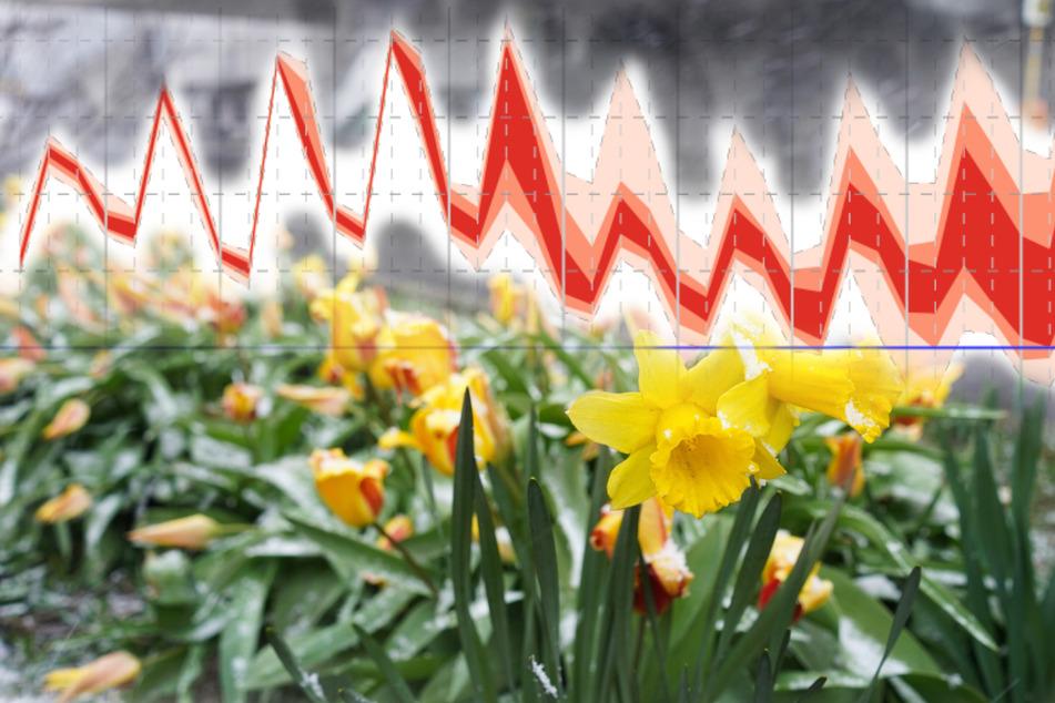 Das Wetter für Ostern in NRW: Temperatur-Kurve fällt steil ab!