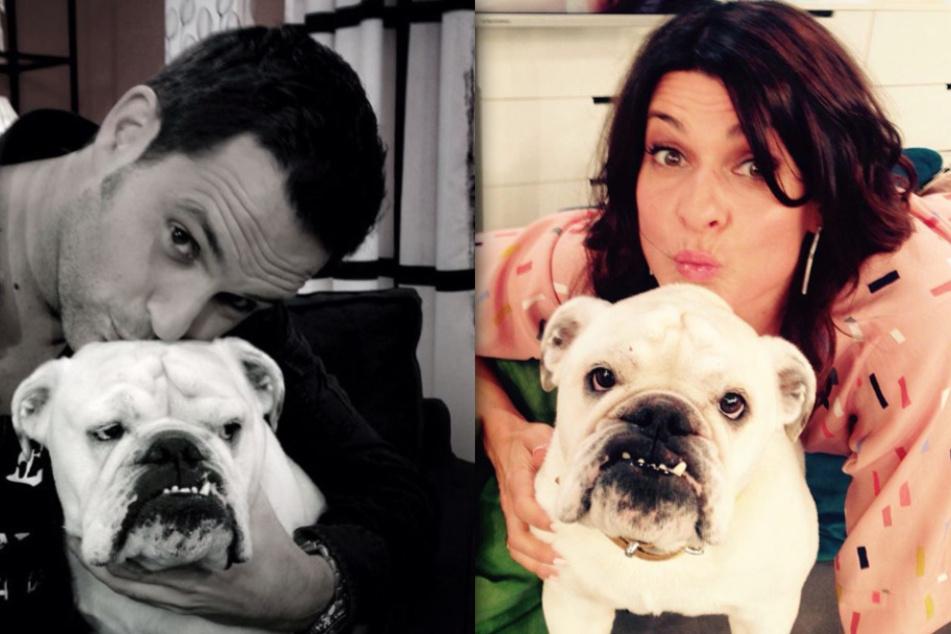 Matthias Killing (40) und Marlene Lufen (49) nehmen Abschied von Studiohund Lotte.