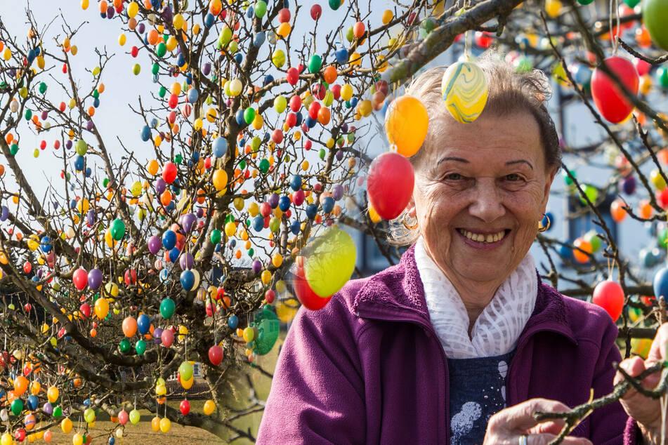 Dresden: Oma Ernas Osterbaum ist mit 1700 Eiern eine richtige Touristen-Attraktion!