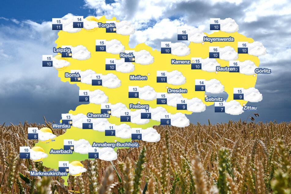 Der Himmel über Sachsen bleibt in den kommenden Tagen von Wolken bedeckt.