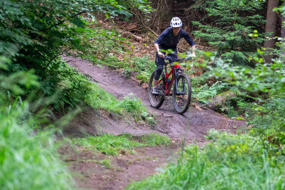 Nora Beyer von der Nürnberger DIMB (Deutsche Initiative Mountainbike), fährt auf einem Trail im Nürnberger Reichswald.