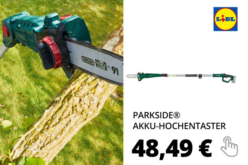 PARKSIDE® Akku-Hochentaster »PAHE 20-Li A1«