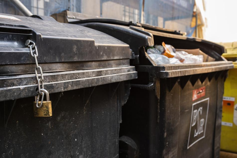 Der Hundewelpe lag mehrere Tage in einem Müllcontainer. (Symbolbild)