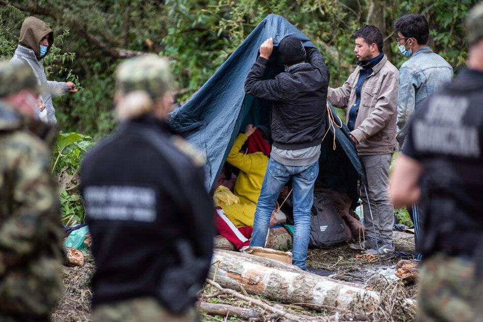 Afghanische Flüchtlinge bauen Zelte auf in einem behelfsmäßigen Lager an der Grenze zwischen Polen und Belarus. Sie werden weder nach Polen gelassen noch dürfen sie nach Belarus zurückkehren.