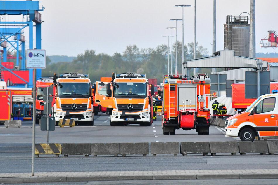 Rund 50 Feuerwehrleute und zahlreiche Fahrzeuge sind am Hafen im Einsatz.