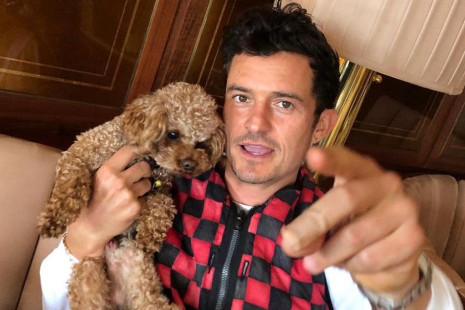 Orlando Bloom (44) weinte zuletzt, als sein Hund Mighty starb.