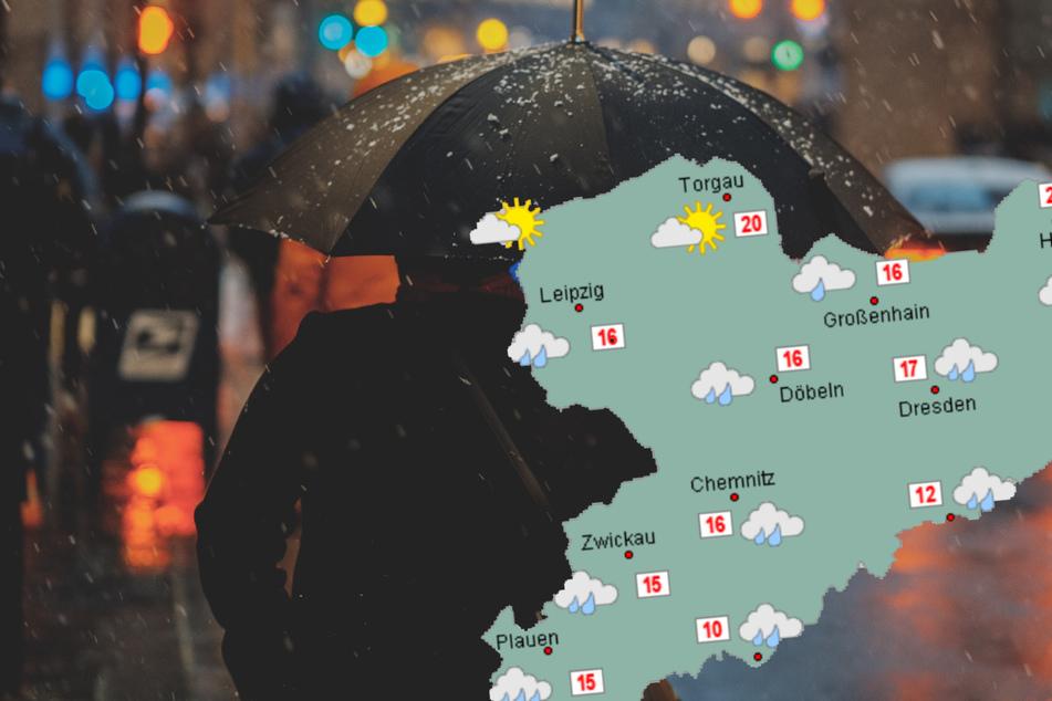 Regenschirme auf! Das Wochenende in Sachsen wird kühl und nass