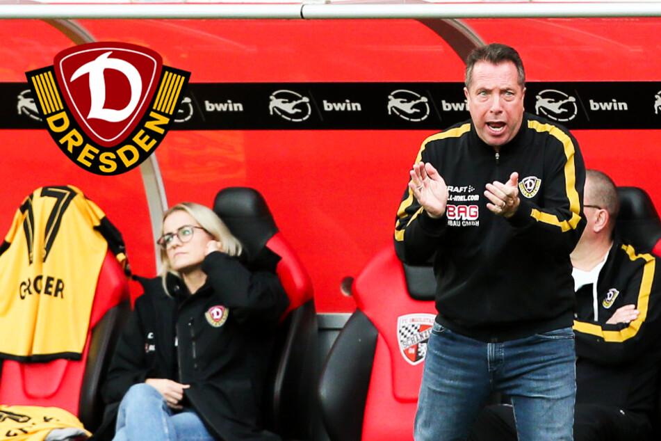 Dynamo plant mit Millionen-Verlust! Wie lange hält die SGD bei 999 Fans oder weniger durch?