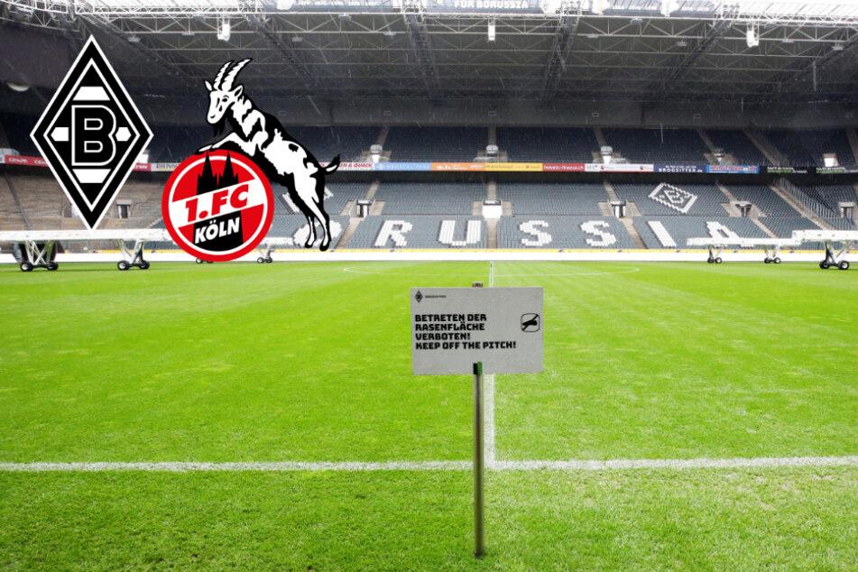 Derby Gladbach gegen 1. FC Köln: Fans sollen nicht zum Borussia-Park reisen