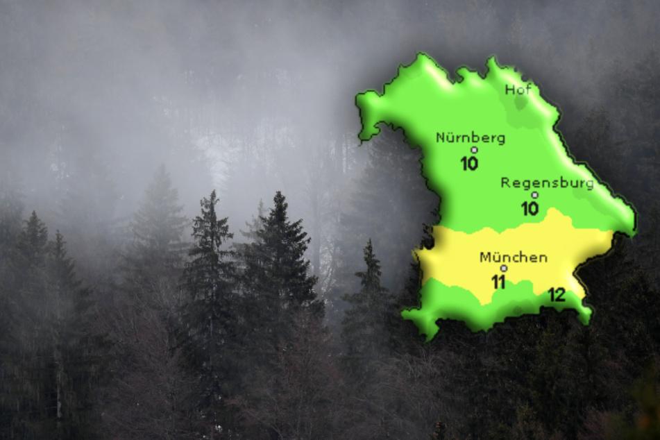 Mildes Wetter in Bayern: Bis zu zwölf Grad im Alpenvorland erwartet