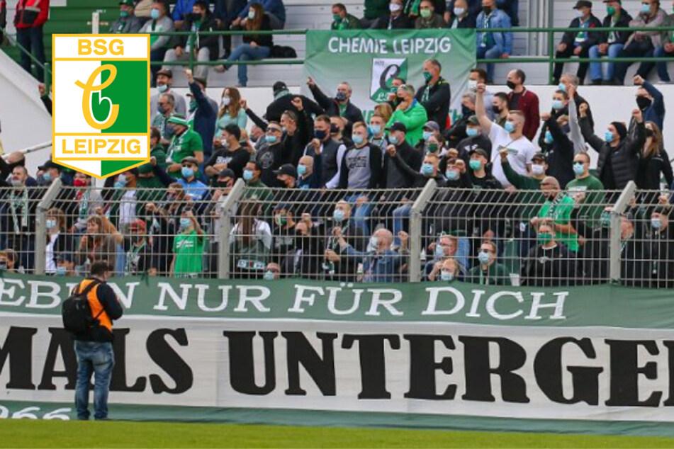 Testspiel-Auftakt von Chemie Leipzig: Bis zu 1600 Zuschauer sind heute im AKS dabei