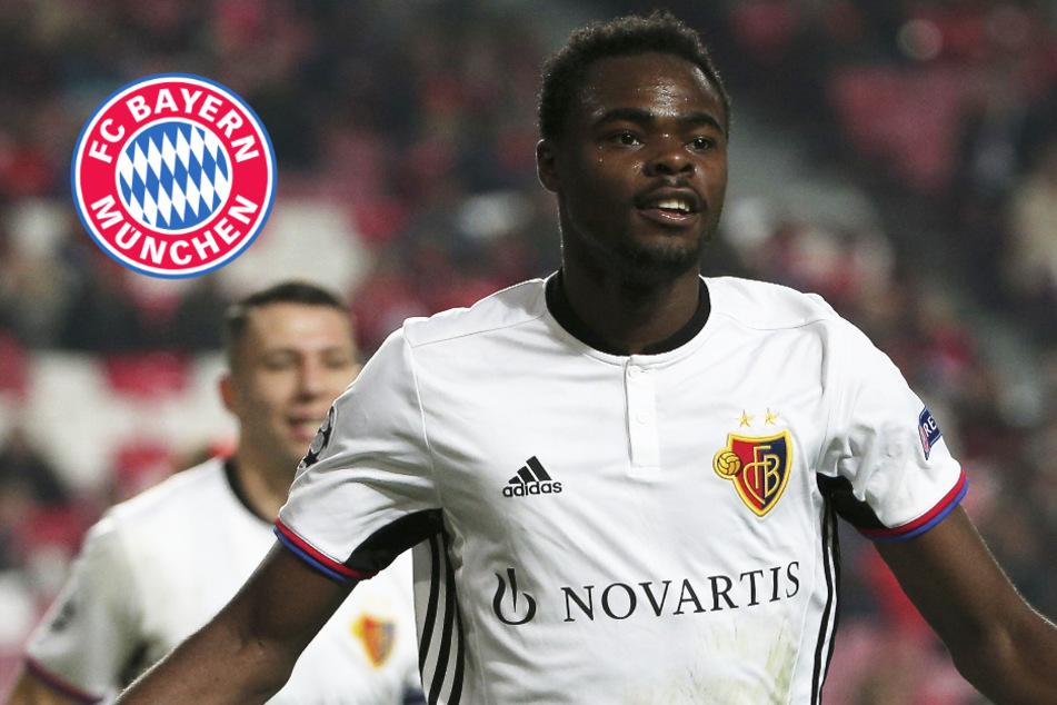 FC Bayern II gelingt Hammer-Verpflichtung! Ex-Nationalspieler nach München