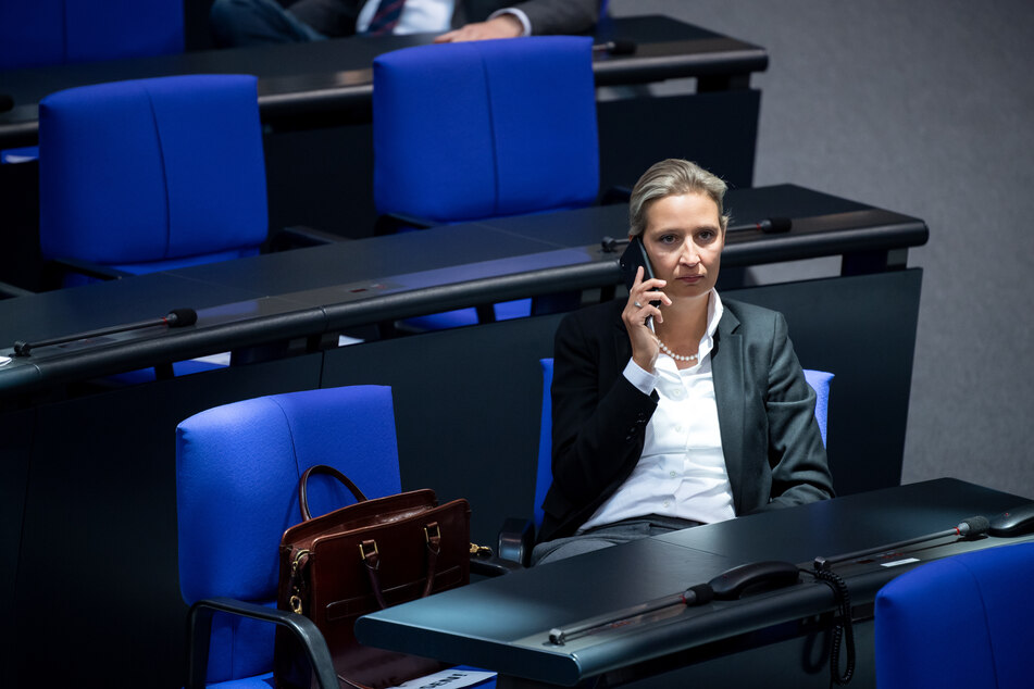 Vorsitzende der AfD-Bundestagsfraktion, Alice Weidel (41). (Archivbild)