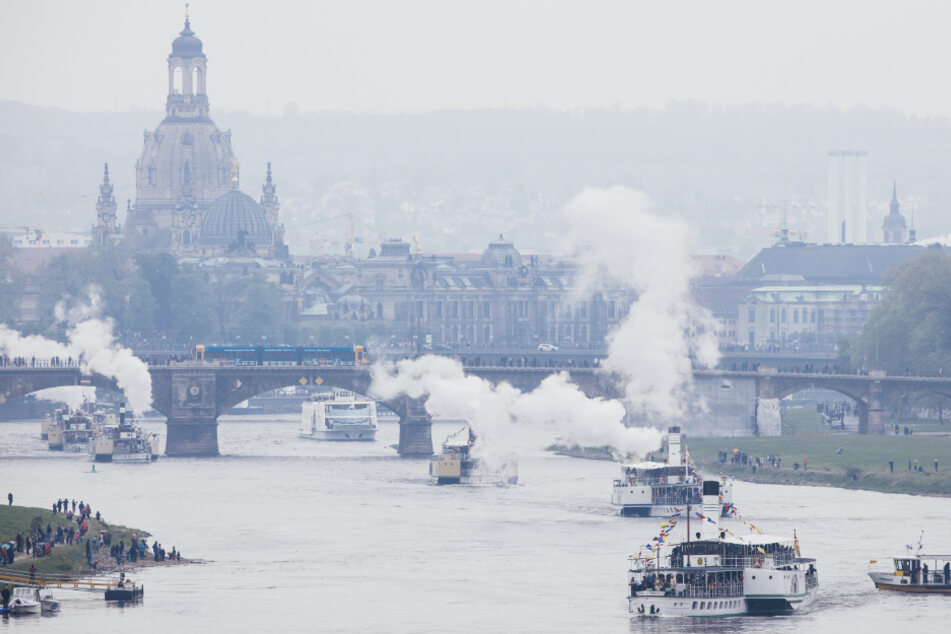 Dampfer der Sächsischen Dampfschiffahrt reihen sich auf der Elbe vor der Kulisse der historischen Altstadt aneinander zur Flottenparade. (Archivbild)