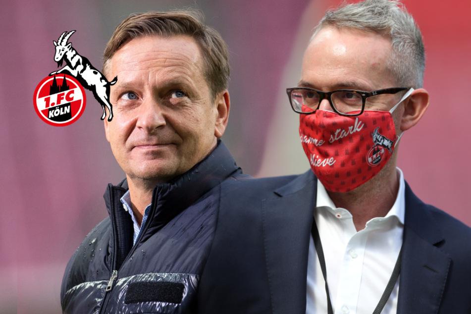1. FC Köln: Gerüchteküche brodelt wegen Alexander Wehrle und Horst Heldt