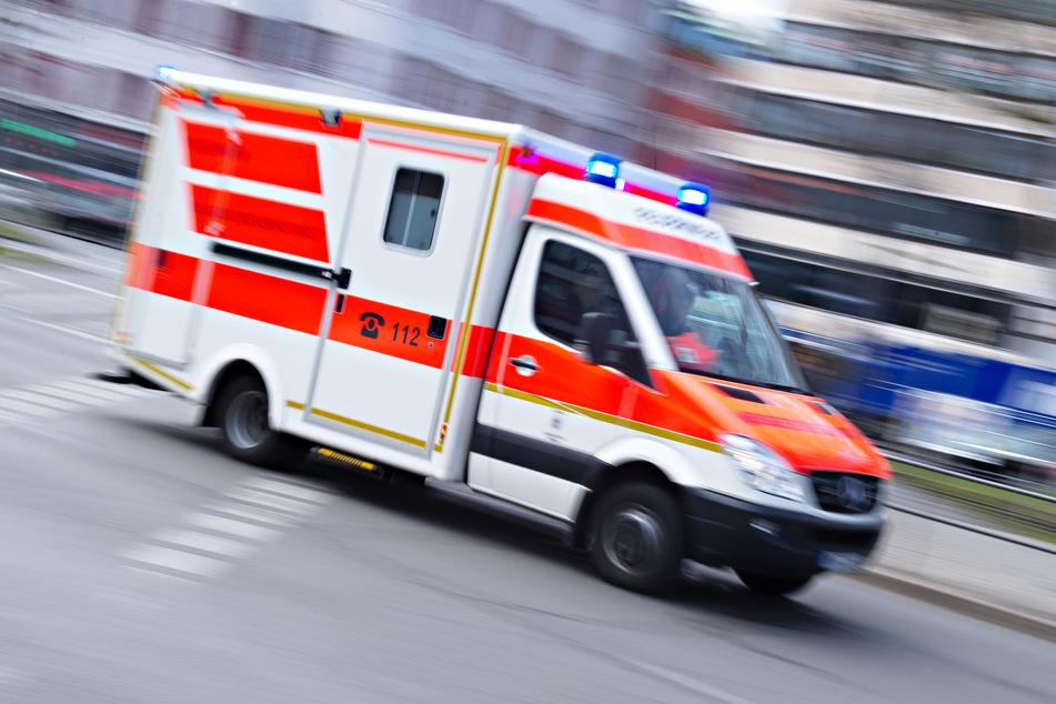 Biene im Helm! Motorradfahrer schwer verletzt