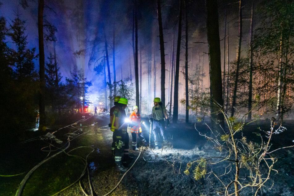 Feuerwehrleute konnten den Brand im Esseler Wald eindämmen.