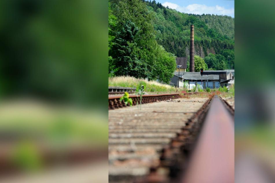 Die Gleise in Richtung Marienberg sind funktionstüchtig, könnten sofort befahren werden.