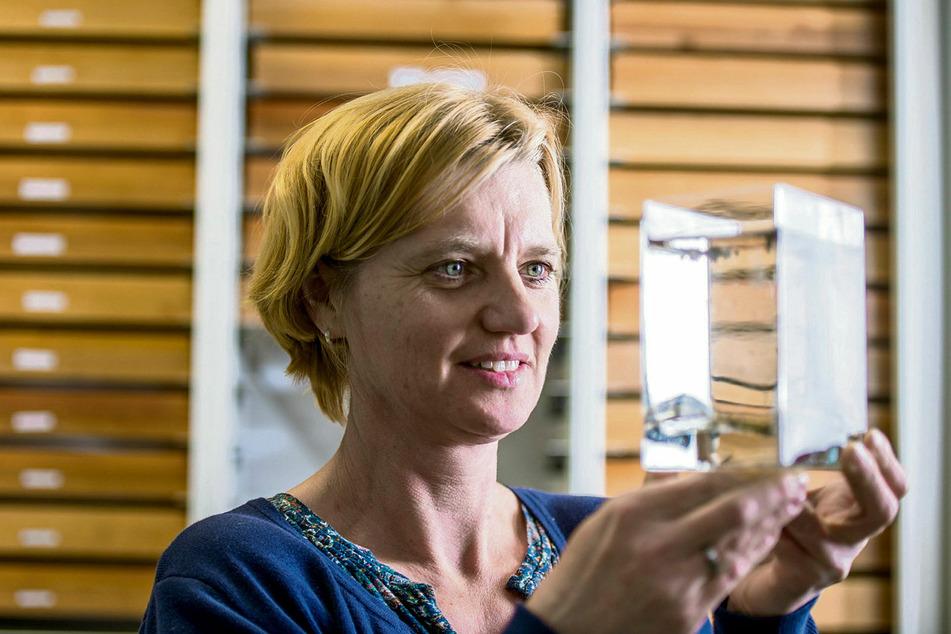Expertin Doreen Werner vom Projekt Mückenatlas hat die aktuellen Populationsdichten im Blick.
