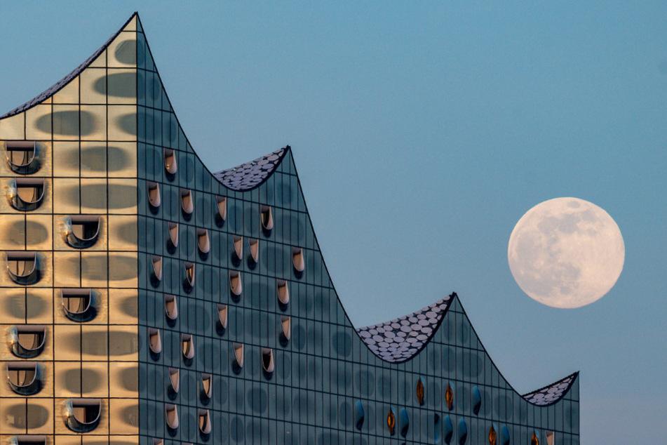 Auch an der Elbphilharmonie on Hamburg erfreut man sich an dem Spektakel.